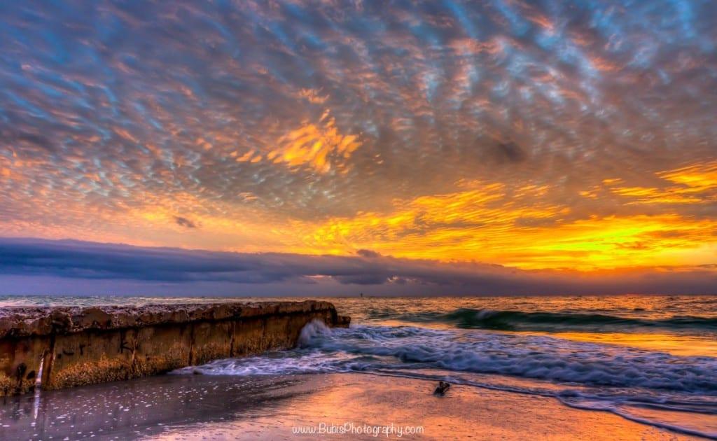 Siesta Key Beach by Dmitry Bubis