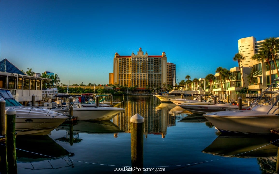 Hyatt Pier at Sarasota, Florida by Dmitry Bubis