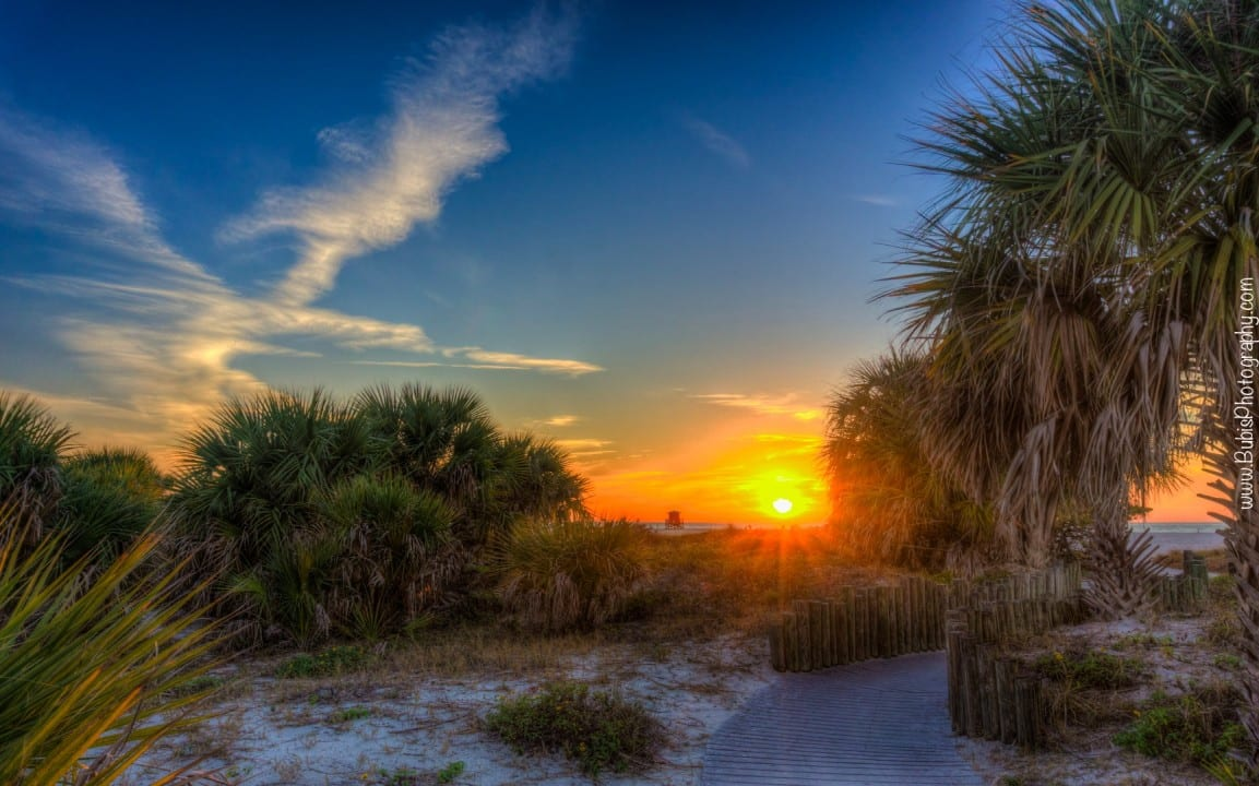 Sand Key Park Sunset by Dmitry Bubis