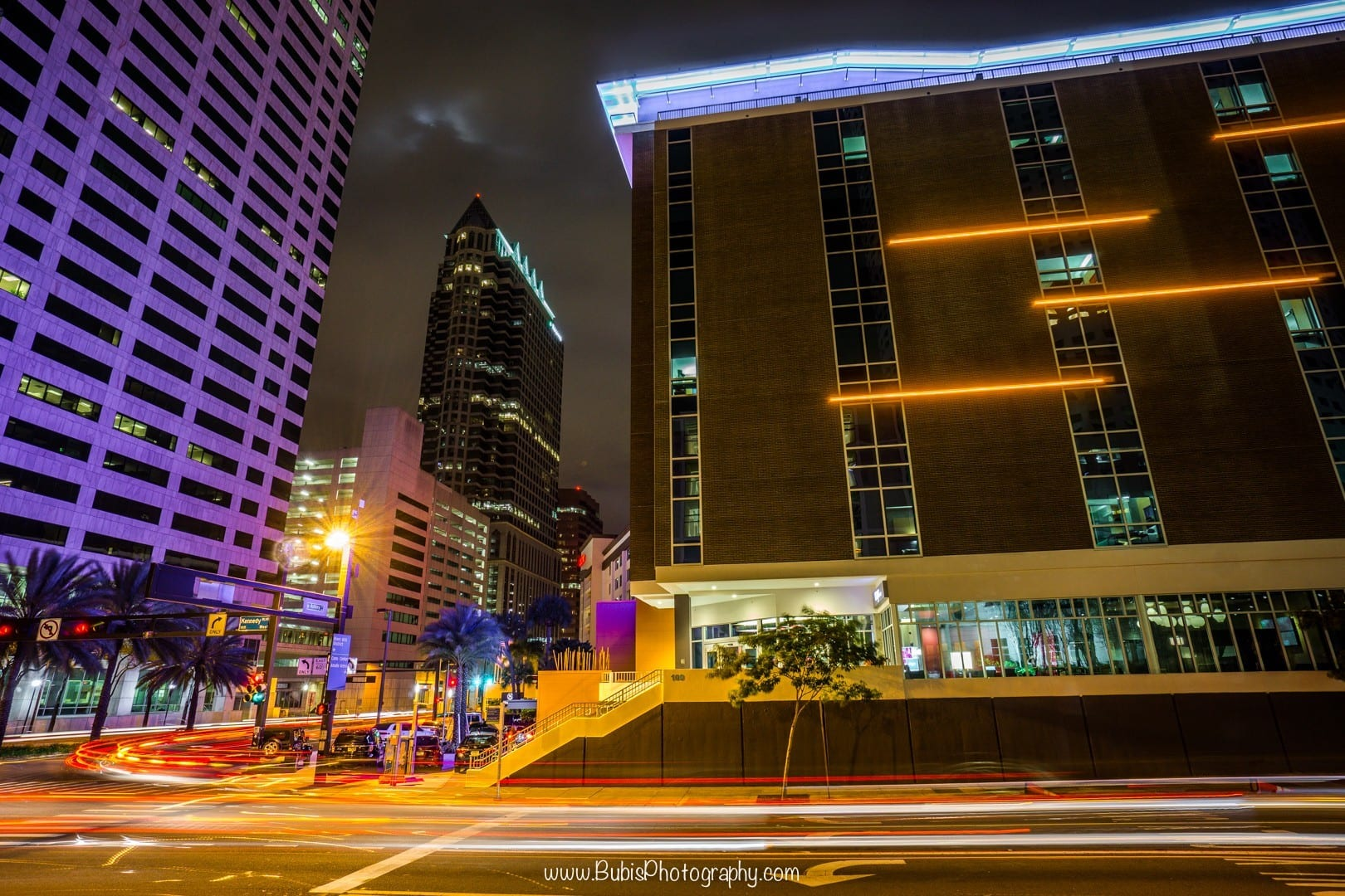 Downtown Tampa by Dmitry Bubis