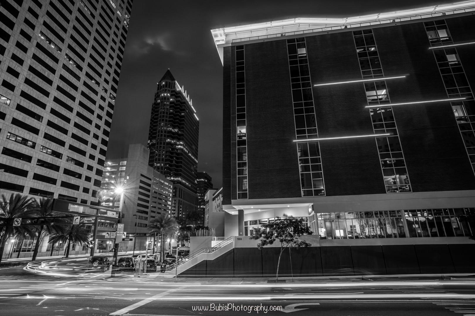 Downtown Tampa (B&W) by Dmitry Bubis
