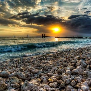 Honeymoon Island - Dunedin, Florida